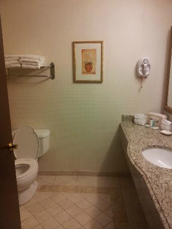 Comfort Inn & Suites: Toilet