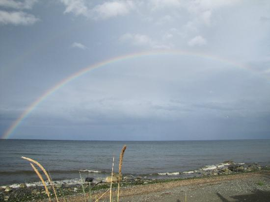 Shady Shores Beach Resort: A rainbow.