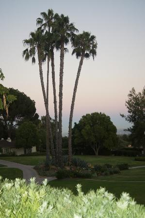 The Langham Huntington, Pasadena, Los Angeles: Great views!