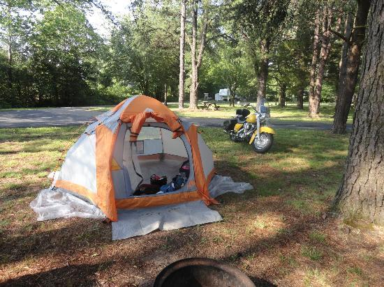 Wynesboro North 340 Campground: Camp site