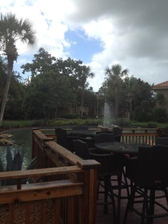 Doubletree by Hilton Orlando at SeaWorld: The grounds of the hotel