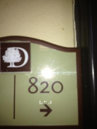 Doubletree by Hilton Orlando at SeaWorld: 820 :) our room