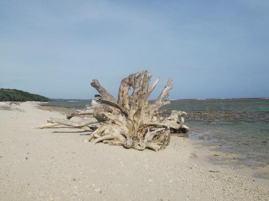 Namuka Bay Lagoon: Beach