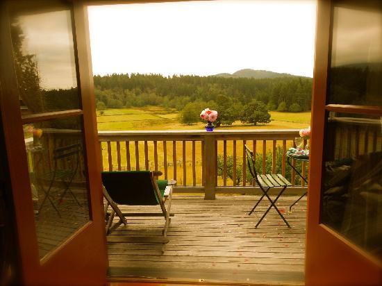 Turtleback Farm Inn: Great view out of those double doors.
