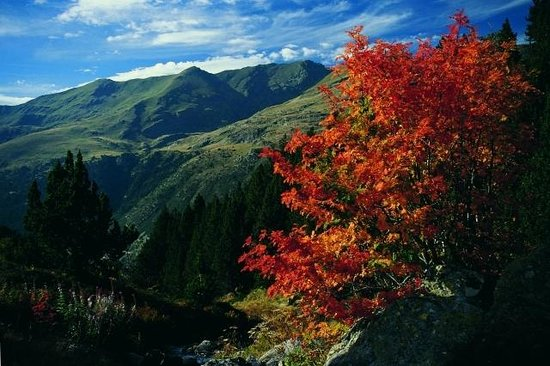 Provided By: Andorra Tourism Board