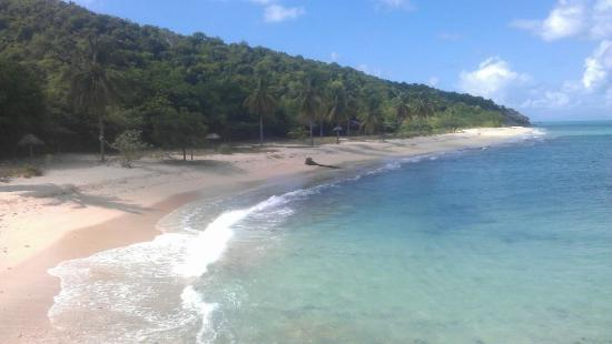Eden Beach (clothing optional)- Picture of Hawksbill by Rex Resorts