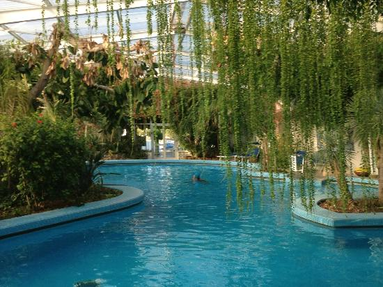 Hotel Continental Terme : Undercover thermal swimming pool