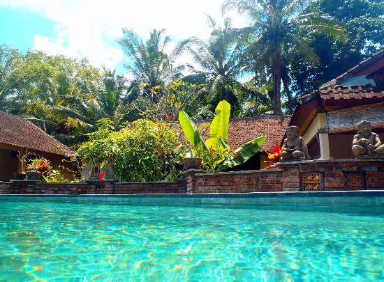 Jati 3 Bungalows: View on and over the pool