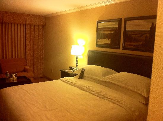 Sheraton DFW Airport Hotel: Room and Bed
