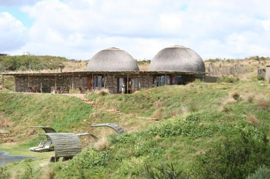 Gondwana Game Reserve: Resturant delitious , allow for extra size clothes to go home in!