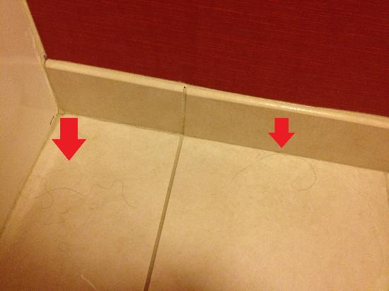 Courtyard by Marriott Richmond Airport: Hairs found in tub