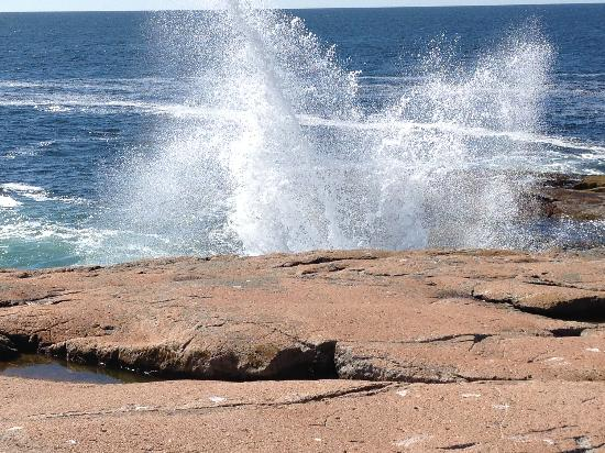 Eden Village Motel and Cottages: Waves at Schoodic Point