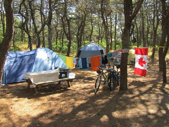 North Of Highland Camping Area: Tent site