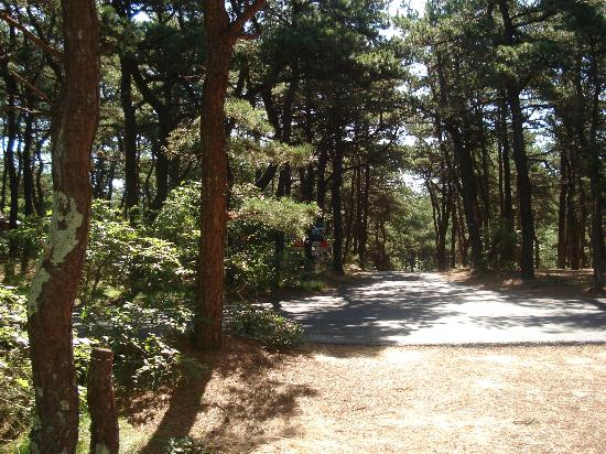 North Of Highland Camping Area: Campground area