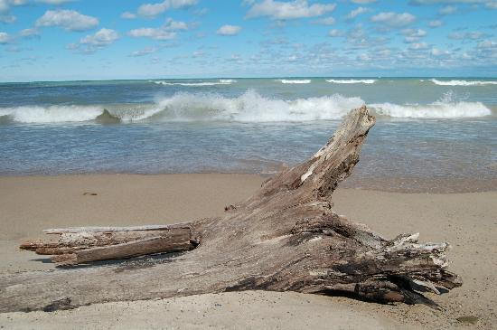 Chesterton, IN: Indiana Dunes Beach
