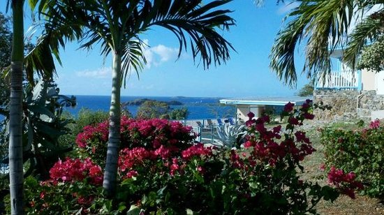 Photo of Paradise Cove Oceanfront Villas & Suites St. Thomas