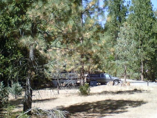 sequoia national park christian dating site On this short and fun rafting trip near yosemite national park you'll challenge raucous rollercoaster wave trains and slick chutes friendly to rafters of all levels.