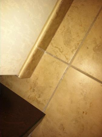 Holiday Inn Express Charlotte-Arrowood: hairs on the bathroom floor at check in