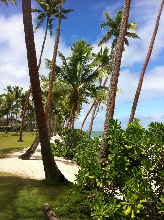 Shangri-La&#39;s Fijian Resort &amp; Spa: Lovely.