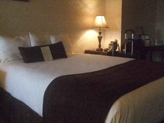 Genetti Hotel - Williamsport: Master room