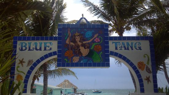 Blue Tang Inn: Sign