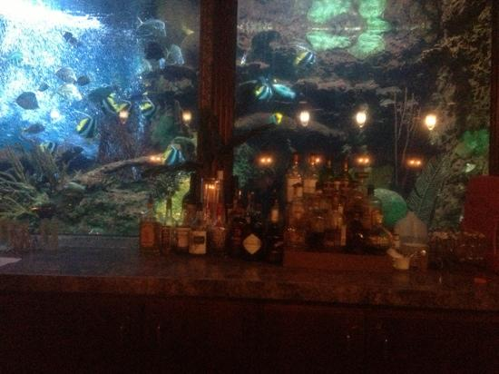 The Bar Picture Of Saltwater Grill Panama City Beach