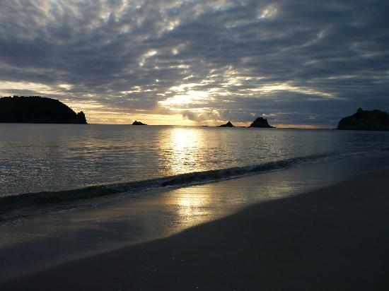 Hahei Oceanfront: Sunrise over HaHei beach