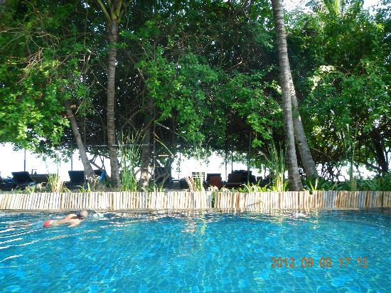 Chaweng Gardens Beach: swimming pool is quite good