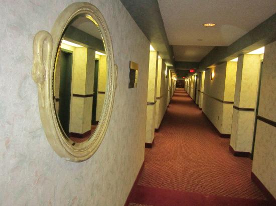 Sheraton Eatontown Hotel: Funky wallpaper and decoration in corridor