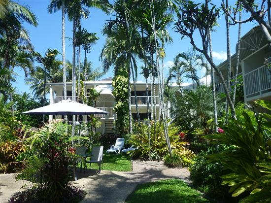 Melaleuca Resort Palm Cove: Apartments from pool gardens