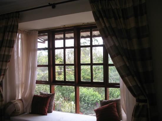 The African Tulip: window seat in the room