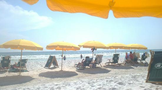 Hilton Sandestin Beach, Golf Resort & Spa: You can rent umbrellas/chairs for around $40 something/day