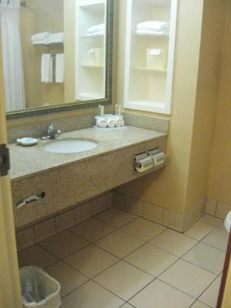 Holiday Inn Express Hotel &amp; Suites St. Petersburg North I-275: sink in bath