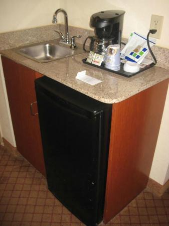 Holiday Inn Express Hotel & Suites St. Petersburg North I-275: refrig