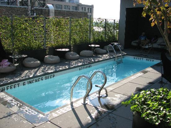 Plunge pool on rooftop for Hotel americano pool