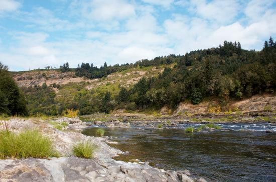 Elkton, Oregn: The Umpqua River