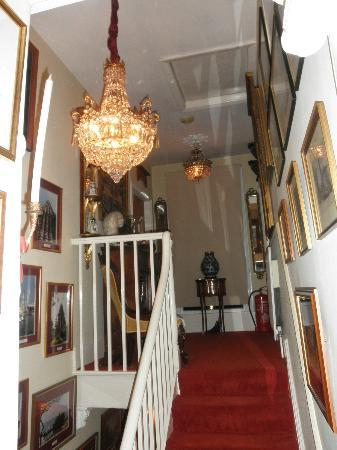 The Hollies: Beautiful staircase leading to rooms