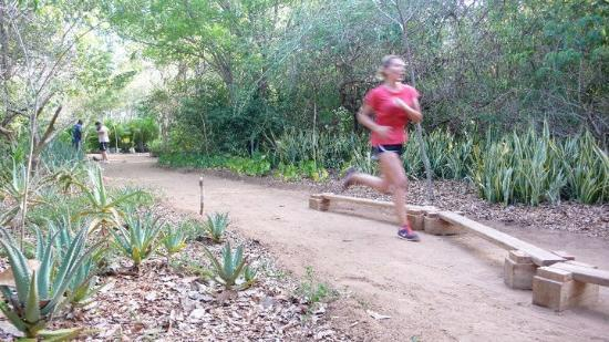 Wildfitness - Baraka House: Circuit training in the jungle