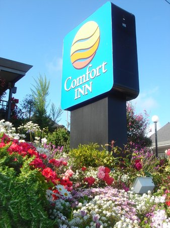 Comfort Inn Monterey Bay