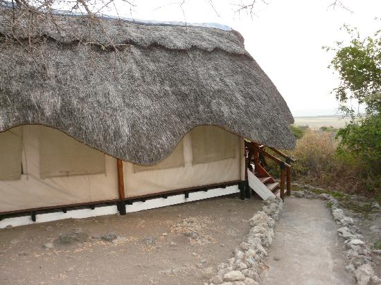 Manyara Wildlife Safari Camp: The Thatched Roofed Tent