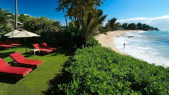 Paia Inn Hotel: White Sandy beach, just steps from our ocean front lounge!