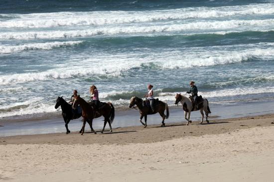 Stephanie Inn: Horseback Riding on Cannon Beach