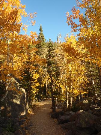 Mother/son teen hike - Review of Flat Top Mountain Trail, Estes Park,