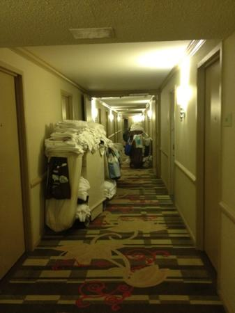 Hilton Westchester: third floor at the Westchester Hilton - Felt a little 'Motel 6-ish'