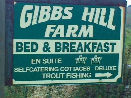 Gibbs Hill Farm: Great!