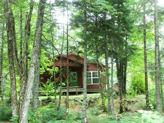 Mersey River Chalets and Nature Retreat: Cabin #4