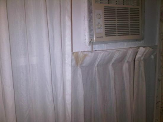 Albert Street Inn: Stains on curtains.
