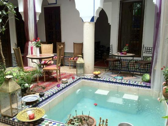 La piscina foto di riad tamarrakecht marrakech for Riad piscine privee marrakech