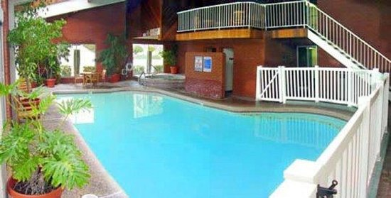 BEST WESTERN Coral Hills: Indoor Pool