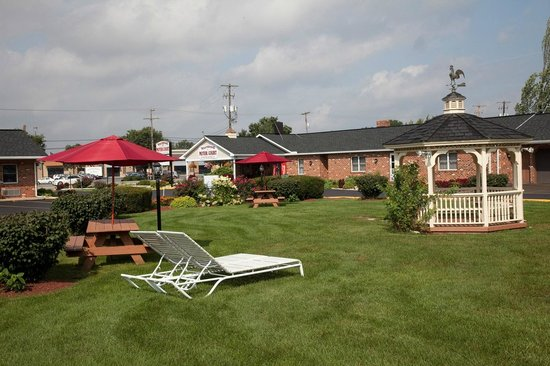 Weathervane Motor Inn: Garden / Picnic Area
